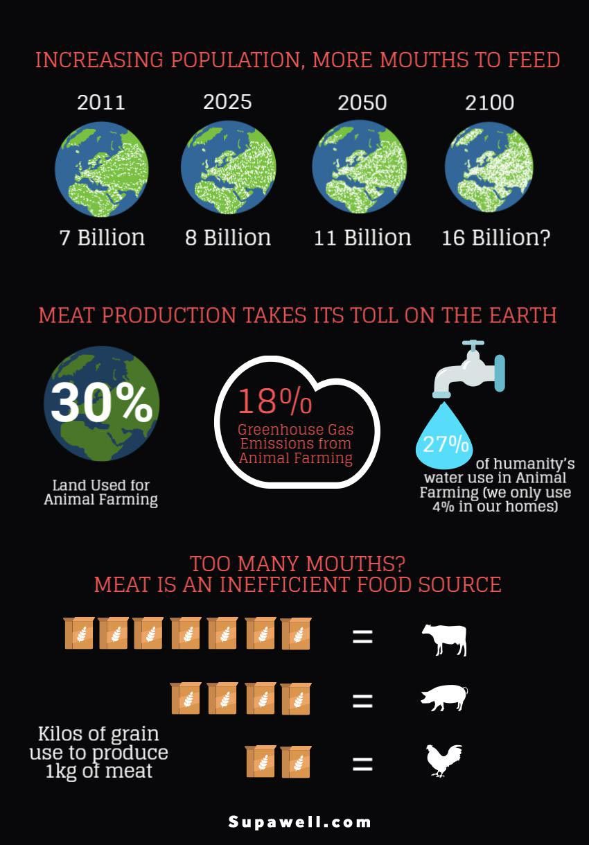 environmental cost of meat production