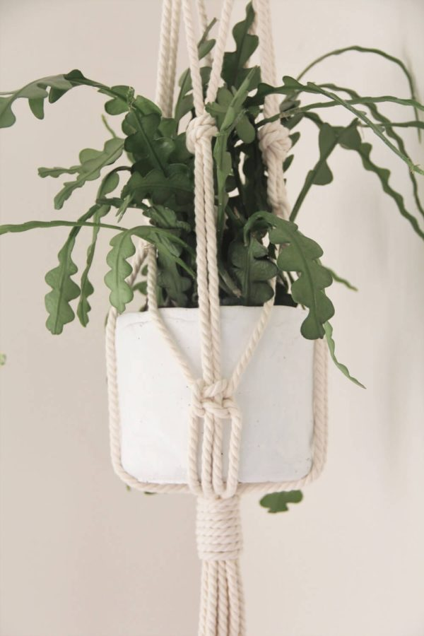 Awaji Knot Macrame Plant Hanger