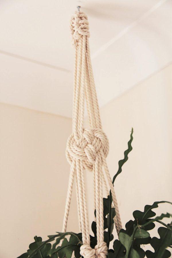 Awaji Knot Macrame Plant Hanger - Knot