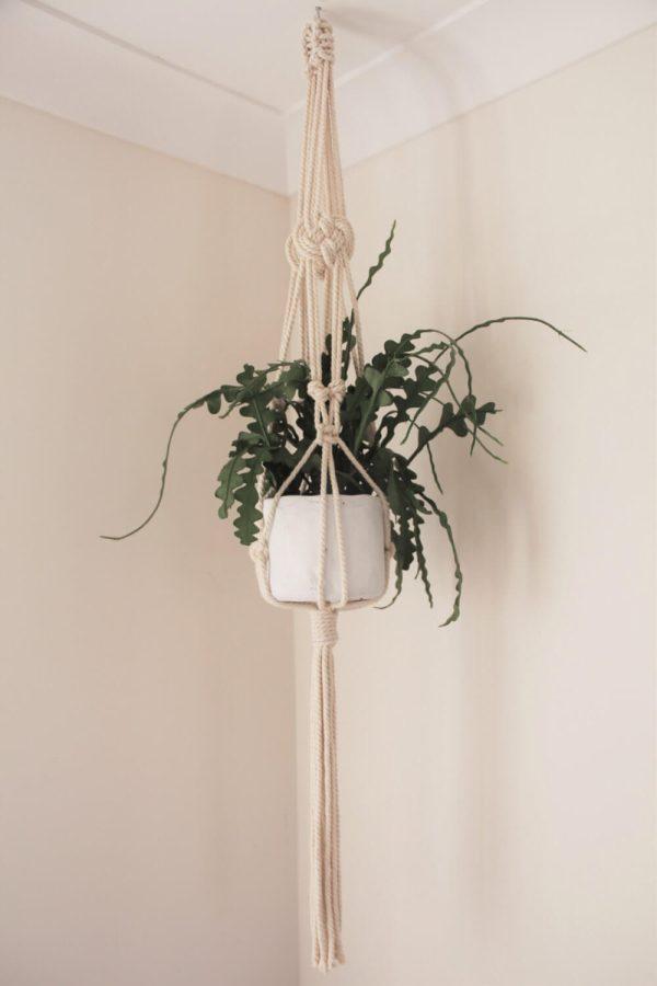 Awaji Knot Macrame Plant Hanger - Natural