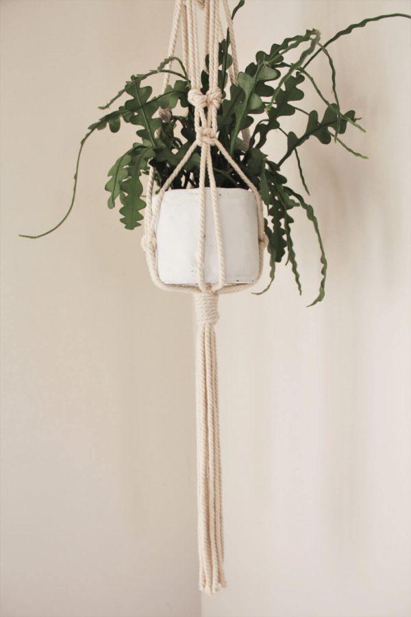 Awaji Knot Macrame Plant Hanger - Ozlo