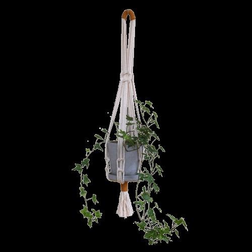 Modern Macrame Planter Hanger