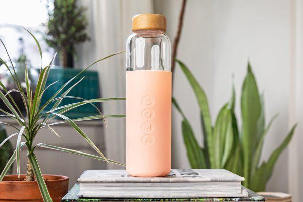 Soma Glass Water Bottle 17oz - Blush Plant